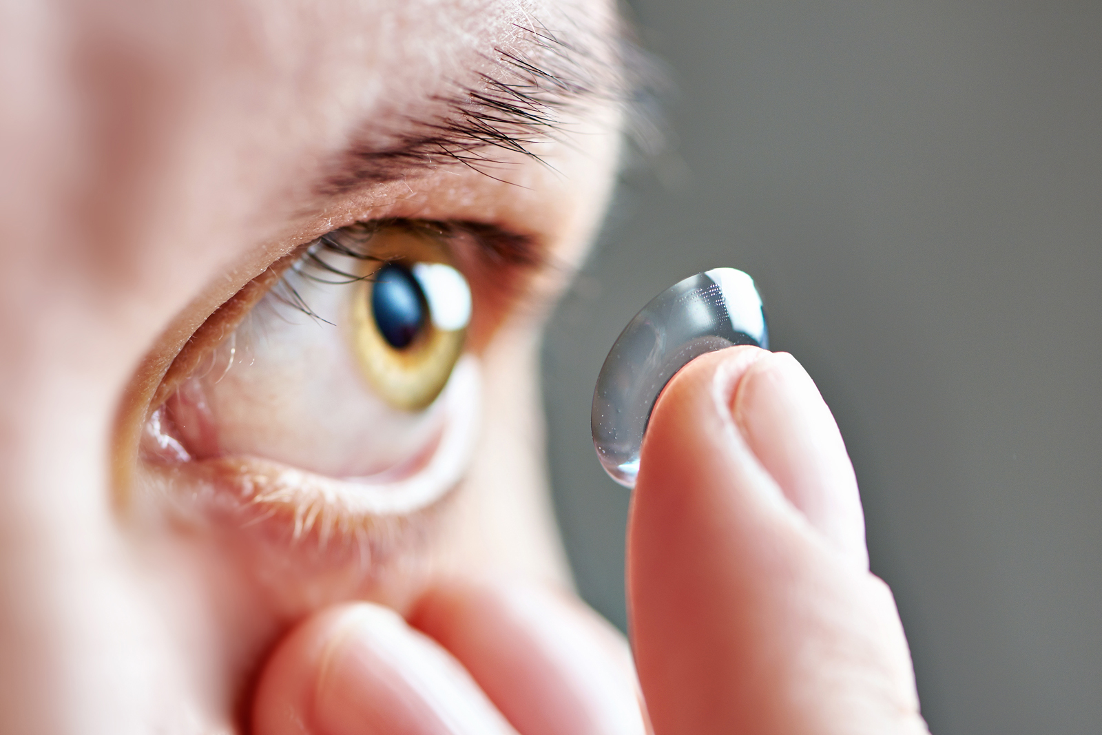disposable contacts